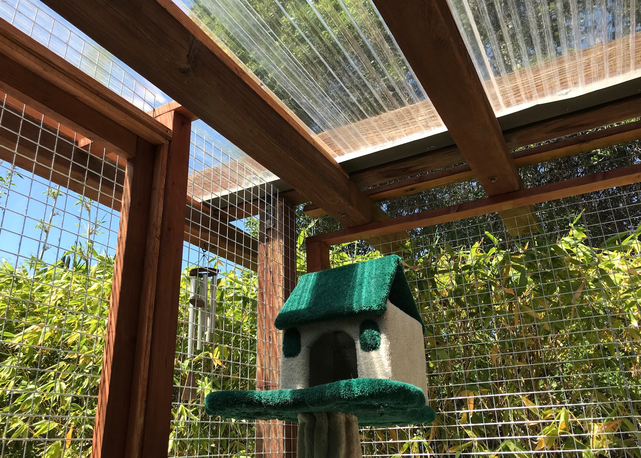 Encino Catio After Roof Shot
