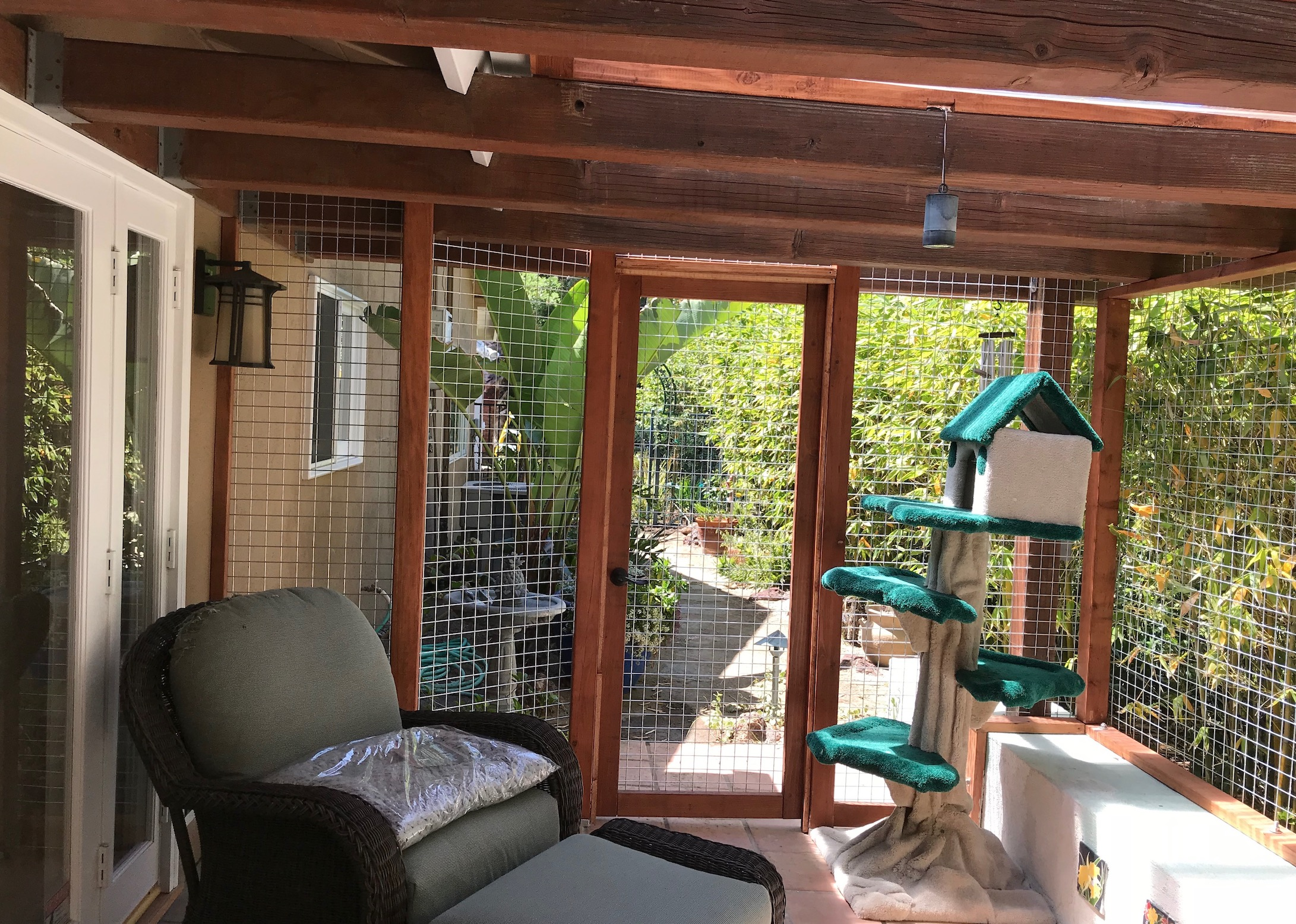 Encino Catio After Shot