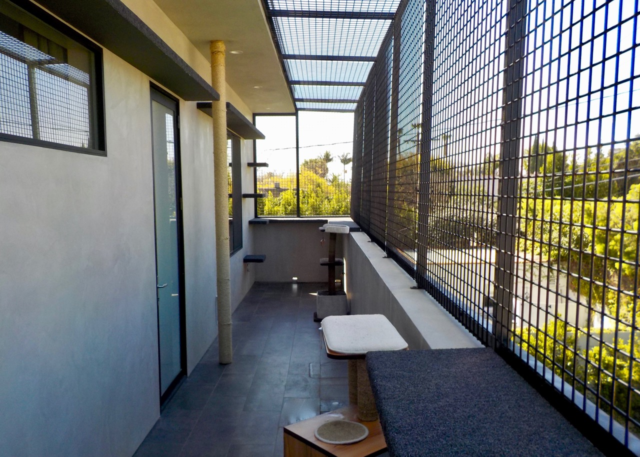 Los Angeles Catio Completed