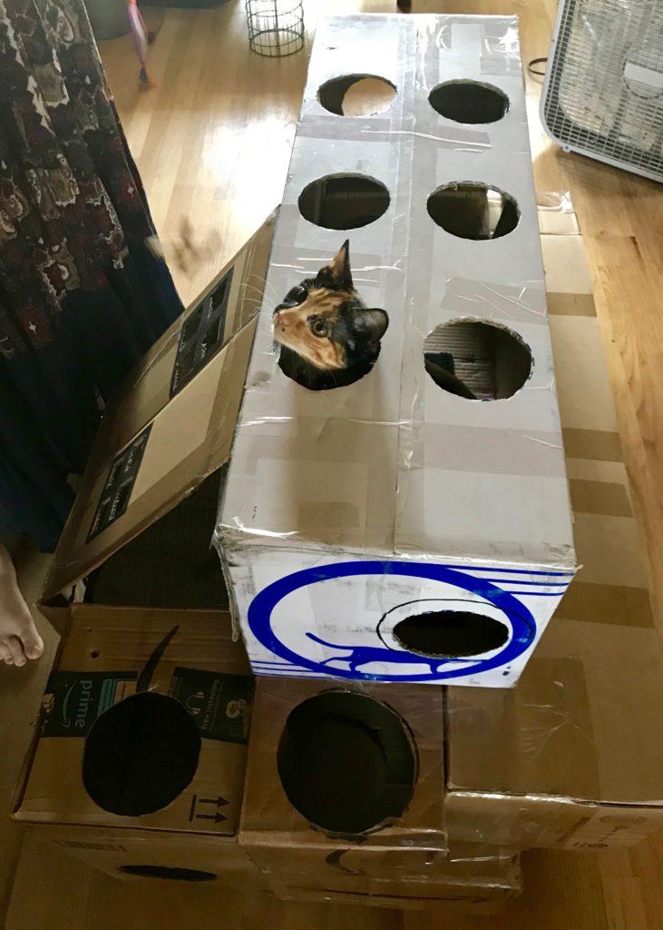 DIY Cat Mansion with Cat head