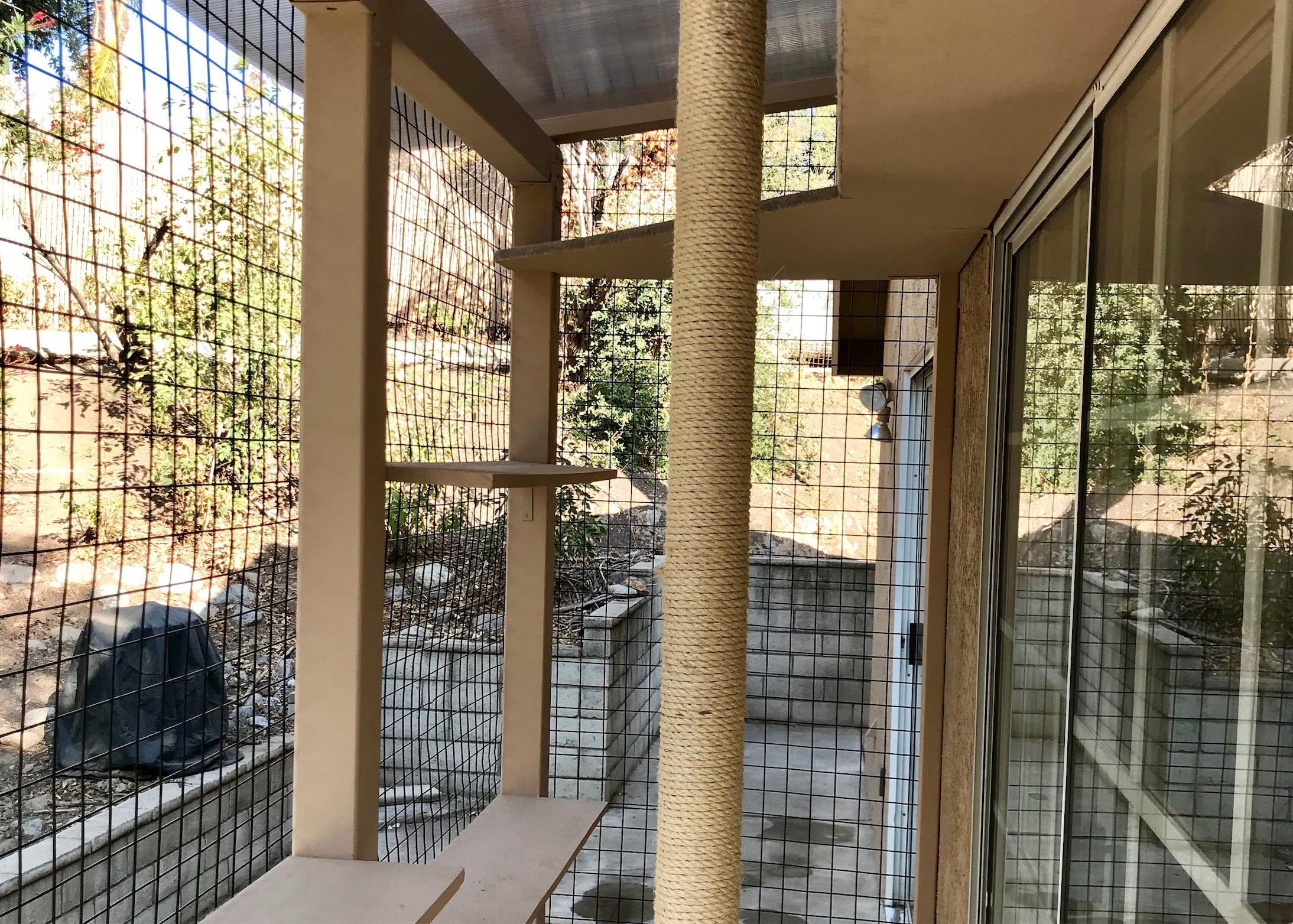 San Dimas Cat Enclosure Catio Inside