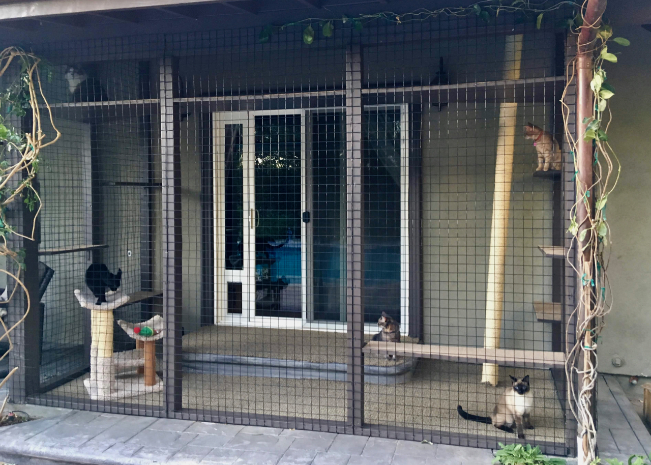 Northridge Catio Cat Enclosure