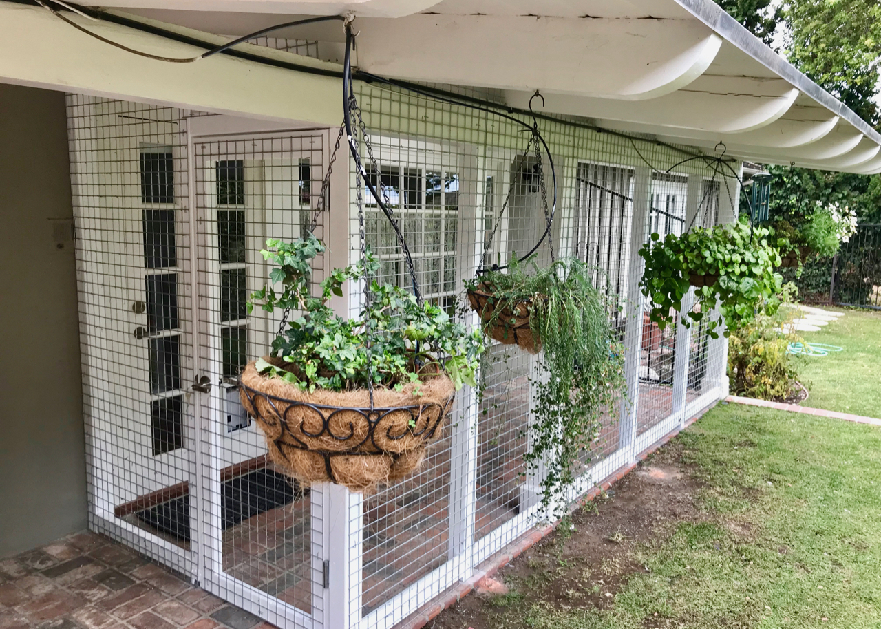 Palos Verdes Estates Catio Cat Enclosure